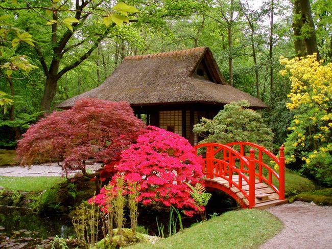 Японский сад и его стили