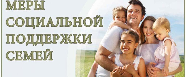 программа господдержки многодетных семей