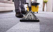 Почему важно регулярно чистить ковры и обивку мебели?